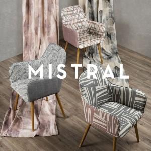 MISTRAL-R1b