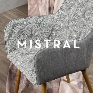 MISTRAL-R2b